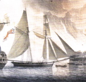 Detail of HMS Pickle, from a painting probably overseen by the commander of HMS Pickle