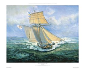 HMSPickle