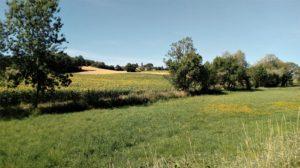 Typically Tarn, Gaillac